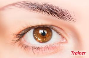 Der Einfluss unserer Sehkraft