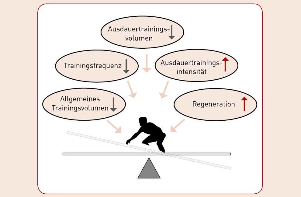 Einflussfaktoren auf die Trainingsanpassungen bei parallelem Kraft- und Ausdauertraining