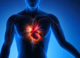 Fitnesstraining bei Herz-Kreislauf- Erkrankungen
